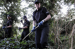 © Licensed to London News Pictures. 08/08/2012 .Police searching woodland opposite Spring Park on the Kentgate Way this evening (8.8.2012).12 years old Tia Sharp has been missing from the Lindens on The Fieldway Estate in New Addington,Croydon,Surrey since Friday last week. .Photo credit : Grant Falvey/LNP