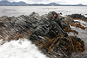 Wade Martin scans the water about a mile off the coast of Sitka, Alaska. Martin is one of a handful of Alaskans licensed to hunt sea otters in the state. (The Wall Street Journal)