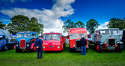 The 44th Biggar Vintage Vehicle Rally held in Biggar on 13th August 2017.  Enthusiats admiring a row of vintage vehicles.<br /> <br /> (c) Andrew Wilson | Edinburgh Elite media