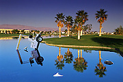 Golf Course, Cart, Sticking out of Water, Fairway, water hazard, rolling fairways, beautiful, greens, natural settings, Palm Trees, challenging, Quality, Unique,