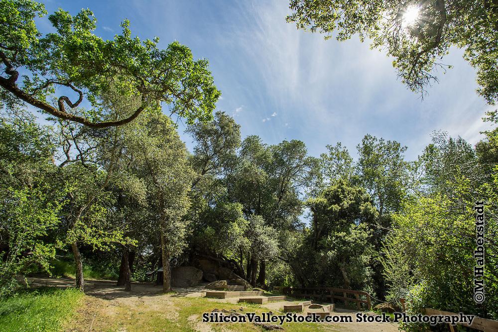 Chitactac-Adams County Park, Gilroy, CA
