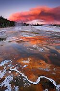 Aguas termales y detalle bacteria termofílica, en el horizonte el humo de un incendio forestal, Upper Geyser Basin, Yellowstone NP, Wyoming (Estados Unidos)