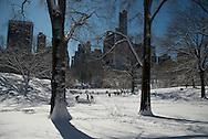 New York. Central park under the snow/ Central park sous la neige.