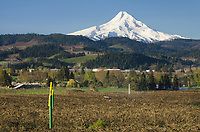 Mount Hood and Hood River Valley farms and orchards, Oregon