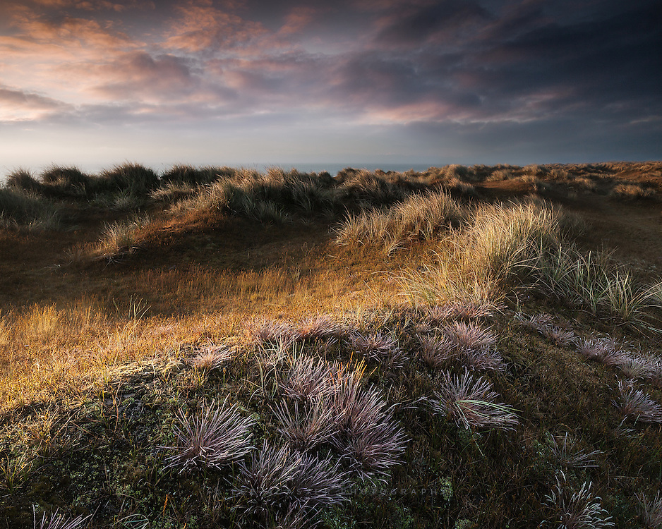 More early light at Winterton on saturday morning