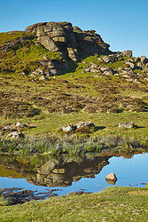 Tor rocks reflected in a small peat pool on Haytor Down, Dartmoor Devon England