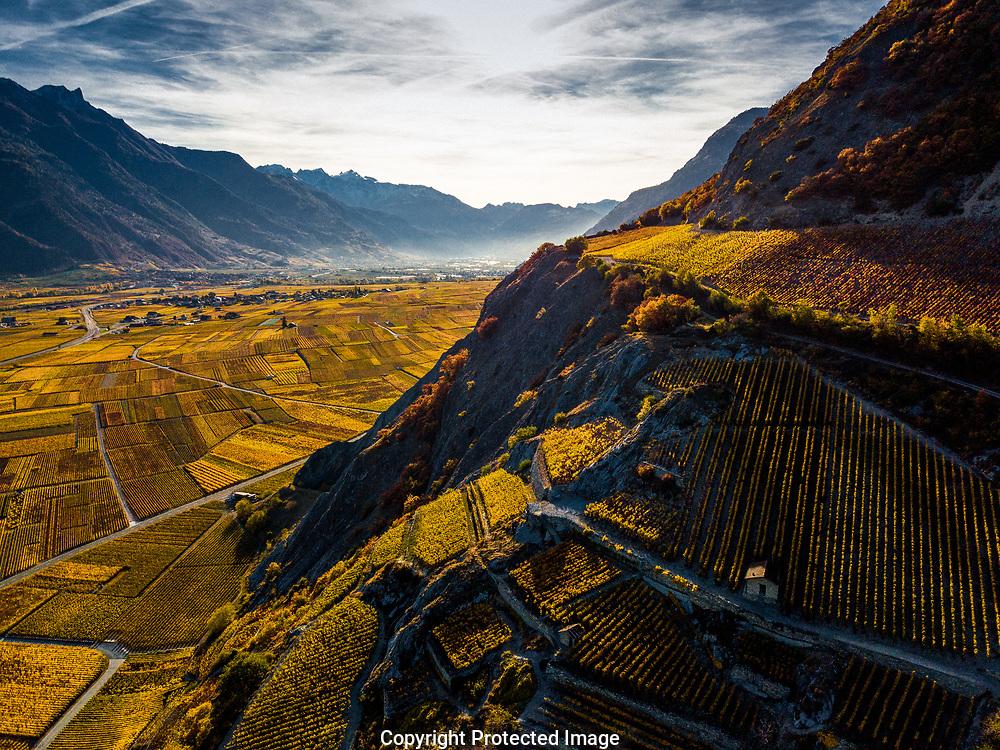 le vignoble a Chamoson en Valais en automne 2017<br /> (OLIVIER MAIRE)<br /> <br /> plaine du Rhone, vignes raisin vin vendanges tourime paysage Valais Wallis