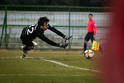 NK Domžale goalkeeper makes a save during football match between NŠ Mura and NK Domžale in 21st Round of Prva liga Telekom Slovenije 2018/19, on March 02, 2019 in Fazanerija, Murska Sobota, Slovenia. Photo by Blaž Weindorfer / Sportida