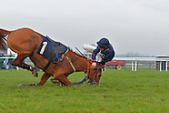 Wetherby Racing 240117