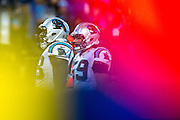 January 24, 2016: Carolina Panthers vs Arizona Cardinals. Thomas Davis, Luke Kuechly