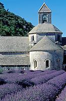 France - Provence - Vaucluse - Abbaye De Senanque