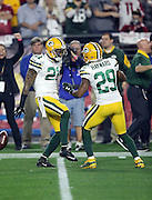 Green Bay Packers cornerback Casey Hayward (29) celebrates with Green Bay Packers free safety Ha Ha Clinton-Dix (21) after Clinton-Dix intercepts a third quarter pass at the Packers 19 yard line during the NFL NFC Divisional round playoff football game against the Arizona Cardinals on Saturday, Jan. 16, 2016 in Glendale, Ariz. The Cardinals won the game in overtime 26-20. (©Paul Anthony Spinelli)