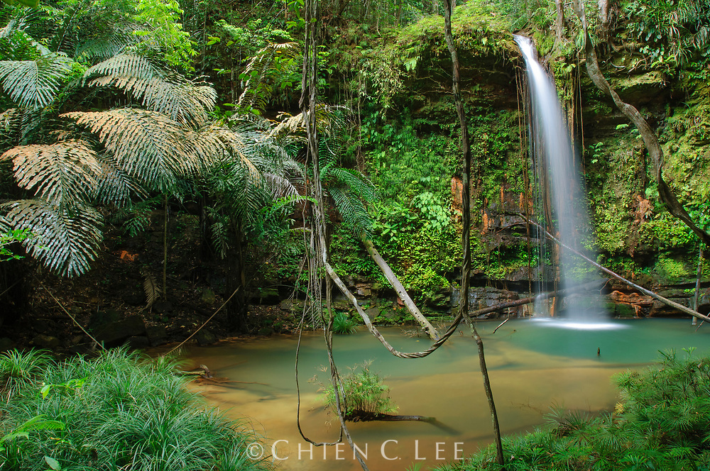 One of the many waterfalls cascading over layered beds of sandstone in Lambir Hills National Park. Sarawak, Malaysia.