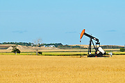 Oil pump jack and wheat<br /> Carlyle<br /> Saskatchewan<br /> Canada