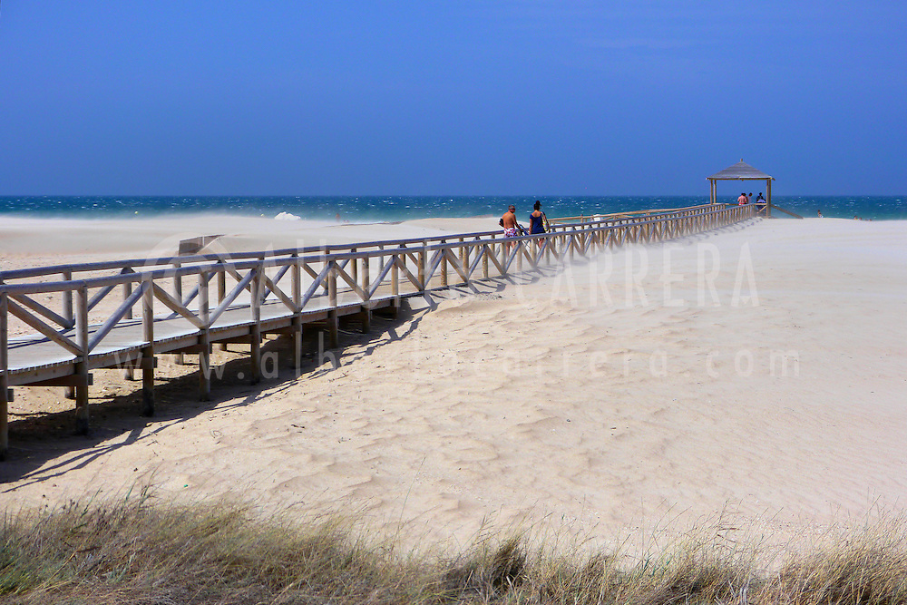 Alberto Carrera, Beach of Conil de la Frontera, Costa de la Luz, Conil de la Frontera, Cádiz Province, Andalusia, Spain, Europe