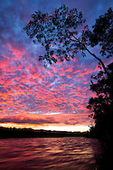 South America, Peru, Amazonia,South Manu National Park , Madre de Dos river at dawn