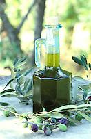 Italie - Toscane - Province de Florence - Huile d'olive. // Italy, Tuscany, Florence province, Olive oil.