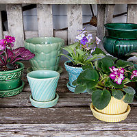 McCoy pots