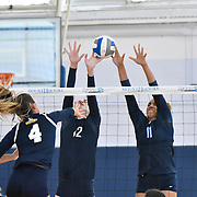 Mount Holyoke Volleyball