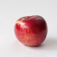 Macintosh apple on white background