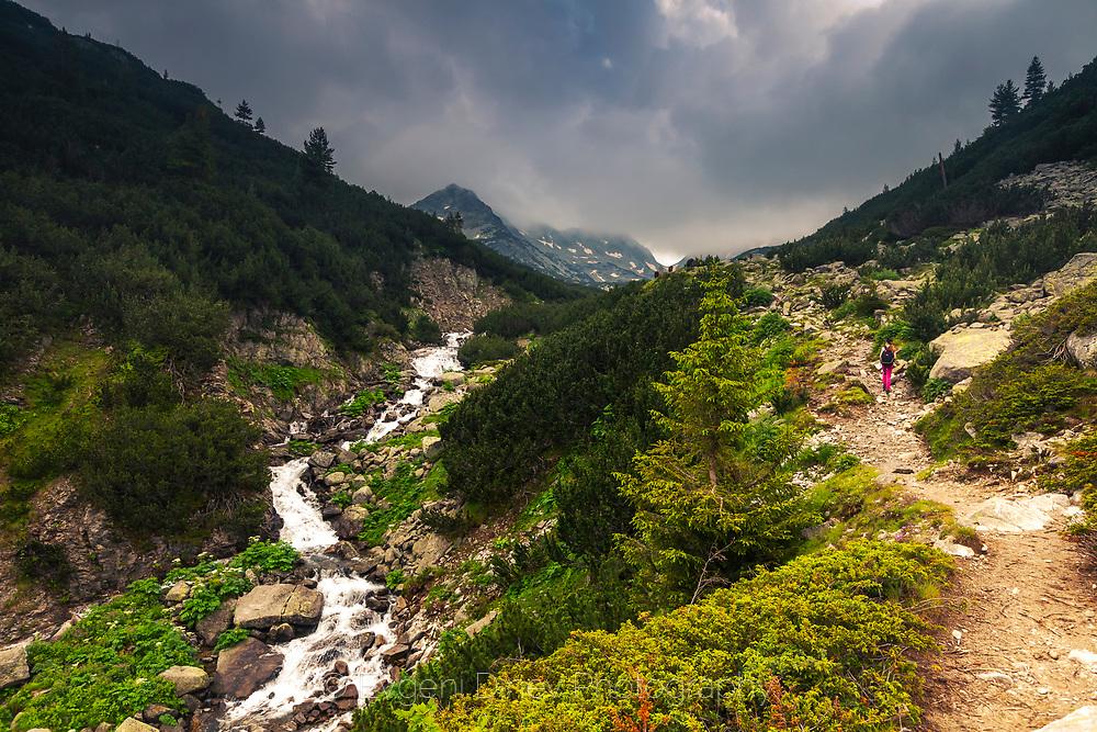 Demyanitsa Valley in Pirin Mountain