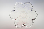 Snowflake magnified under microscope