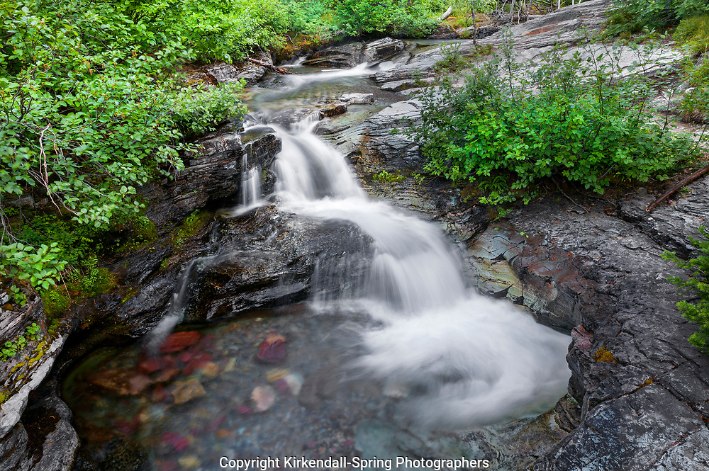 MT00112-00...MONTANA - Ptarmigan Falls along Ptarmigan Creek in Glacier National Park.