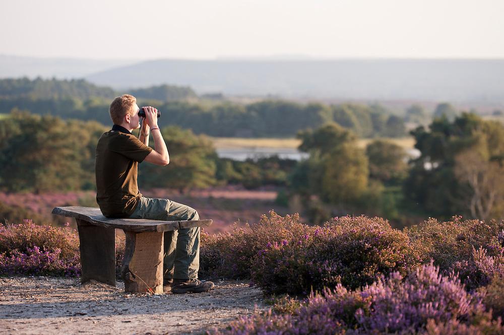 Visitor (Bill Ryley) looks for visiting Osprey at Arne (RSPB) Nature Reserve, Dorset, UK. September 2011. (Model released).