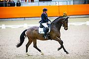 Annet Roelen Nieland - Controversy<br /> KNHS Indoorkampioenschappen 2020<br /> © DigiShots