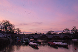 Richmond, London, February 17th 2016. XXX as dawn breaks over the River Thames. <br /> ///FOR LICENCING CONTACT: paul@pauldaveycreative.co.uk TEL:+44 (0) 7966 016 296 or +44 (0) 20 8969 6875. &copy;2015 Paul R Davey. All rights reserved.