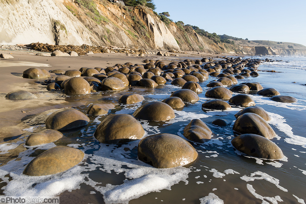 Bowling Ball Beach, Schooner Gulch State Park, south of Point Arena, Mendocino County, California, USA. Pacific Ocean waves have weathered coastal bluffs (steeply tilted beds of Miocene Galloway Formation, Cenozoic Era mudstone) to expose spherical sandstone concretions resting on bowling lanes. Concretions form because minerals of like composition tend to precipitate around a common center.