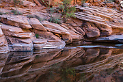 Canyon reflections. Hunter Canyon hiking trail, on BLM land, Moab Kane Creek Blvd, Moab, Utah, USA. The BLM (Bureau of Land Management) is part of the United States Department of the Interior.