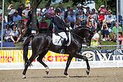 Inna Tzydrenkova - Der Designer<br /> FEI World Breeding Dressage Championships for Young Horses 2012<br /> © DigiShots