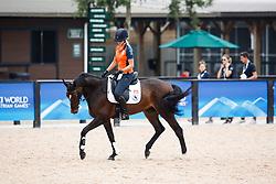 Kroeze Renske, NED, Jane Z<br /> World Equestrian Games - Tryon 2018<br /> © Hippo Foto - Sharon Vandeput<br /> 11/09/2018