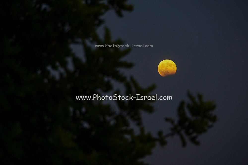 Rising Moon Photographed in Crete, Greece