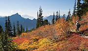 From atop Mount Dickerman, see South Fork Stillaguamish River Valley, fall foliage colors, Hall Peak (left) and Mount Pilchuck. Mount Dickerman Trail #710 in Mount Baker-Snoqualmie National Forest starts from the Mountain Loop Highway east of Verlot, Washington, USA.