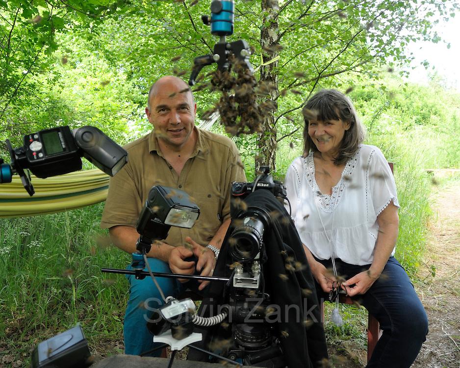 Autorin Irmgard Hochreither (rechts) und Fotograf Solvin Zankl (links) beobachten, wie sich die Bienen regelrecht drängeln um im outdoor Studio fotografiert zu werden. Kiel, Deutschland
