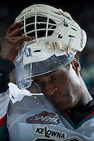 KELOWNA, CANADA - JANUARY 9: Michael Herringer #30 of Kelowna Rockets removes his helmet at the bench against the Tri City Americans on January 9, 2016 at Prospera Place in Kelowna, British Columbia, Canada.  (Photo by Marissa Baecker/Shoot the Breeze)  *** Local Caption *** Michael Herringer;