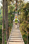 Suspension bridge at Jungle Flight zip line and forest canopy tour; Chiang Mai, Thailand.