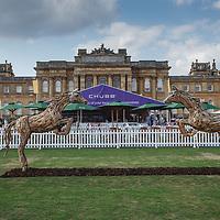 Blenheim Palace at Salon Privé 31 August - 2 September 2018