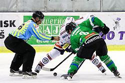 Linesman Matjaz Hribar and Roland Kaspitz of Olimpija during ice-hockey match between HDD Telemach Olimpija and EC VSV in EBEL league, on November 1, 2015, in Hala Tivoli, Ljubljana. Photo by Morgan Kristan / Sportida.