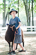 Ben Couvee, 11, of Bedford listens to the judge while holding a sheep during the Kids' Judging at the Middlesex County 4-H Fair, August 28, 2015. The Good Shepherd Sheep Club held the Kids' Judging to give the kids a chance to judge sheep to help them better understand the work the judges do when they judge the competitions.  (Wicked Local Staff Photo/ Sam Goresh)