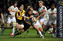 George Pisi of Northampton Saints scores a try in the second half  - Photo mandatory by-line: Patrick Khachfe/JMP - Mobile: 07966 386802 13/12/2014 - SPORT - RUGBY UNION - Northampton - Franklin's Gardens - Northampton Saints v Treviso - European Rugby Champions Cup