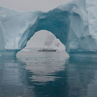 Polar Adventure Fine Art