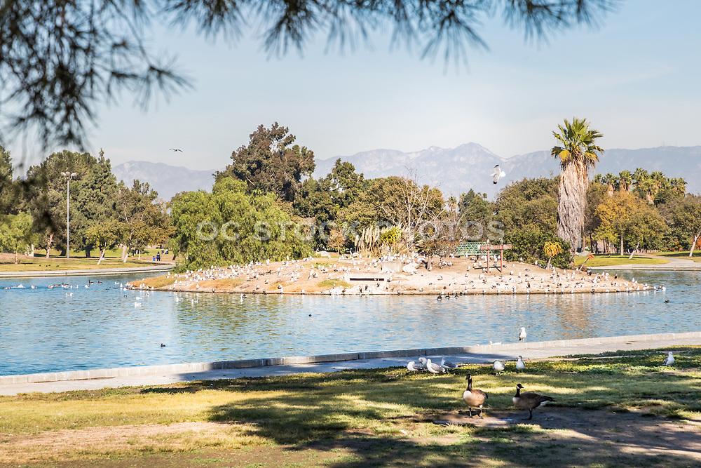 Lake at Earvin Magic Johnson Recreation Area