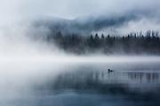 """Breathe"" Vermillion Lake, Banff National Park."