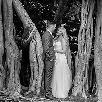 Mia & Daniel ~ Wedding Highlights Gallery