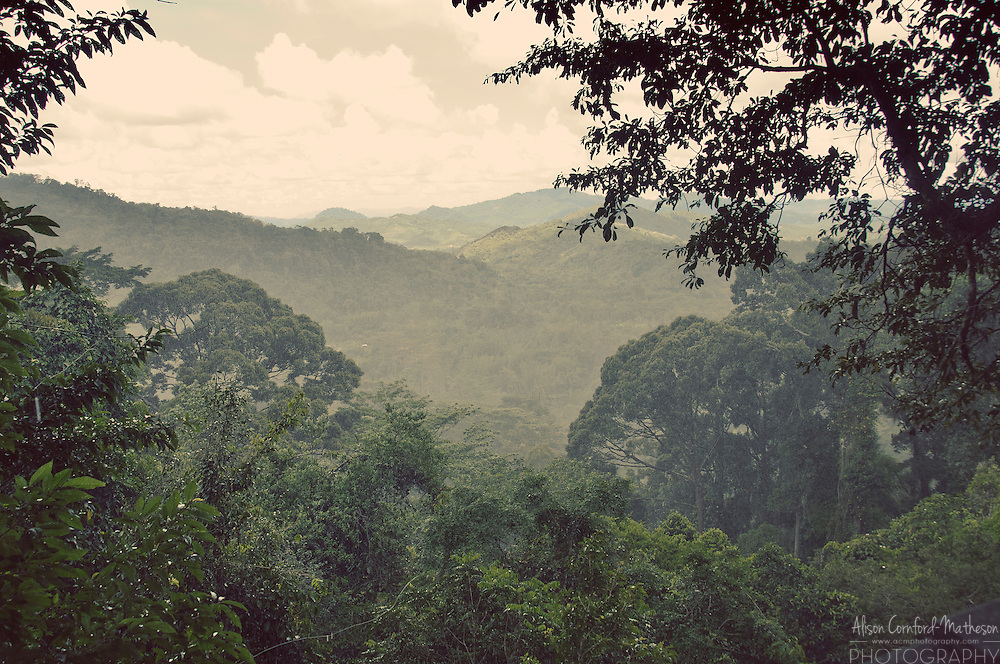 For more information, please visit: http://cheeseweb.eu/2013/06/kinabalu-park-unesco-site-malaysian-borneo/