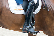 Rijlaars<br /> Excellent Dressage Sales<br /> Longines FEI/WBFSH World Breeding Dressage Championships for Young Horses 2016<br /> © DigiShots