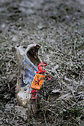 An unidentified runner at the 2009 Nike Cross National high school national championship meet lost his shoe in a muddy portion of the course.<br /> <br /> Nike Cross Nationals (NXN)<br /> Boy's Championship Race<br /> Portland Meadows Race Track<br /> Portland, OR<br /> December 5, 2009